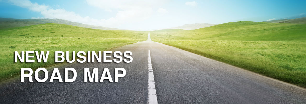 new-business-roadmap